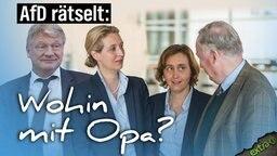 AfD (Meuthen, Weidel, von Storch) rätselt: Wohin mit Opa (Alexander Gauland)
