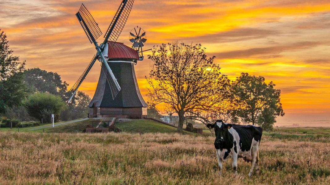 Die Bilder des Tages aus Niedersachsen