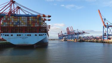 Blick auf ein Containerschiff am Waltershofer Hafen in Hamburg. © NDR Foto: Gerd Baars
