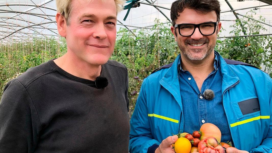 Tomaten-Kabeljau vor Glückstadt | NDR.de - Fernsehen ...