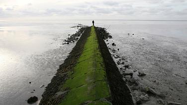 Seit 2009 UNESCO Weltnaturerbe: Das Wattenmeer. © © NDR/nonfictionplanet/Steven Galling, honorarfrei