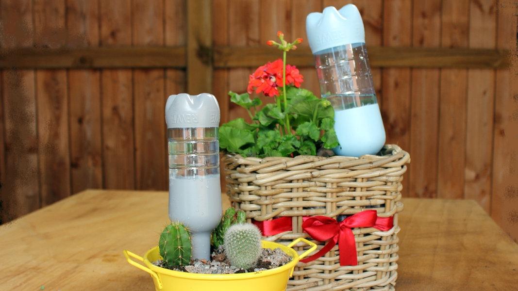 Giesstrick Pet Flaschen Als Wasserspender Ndr De Fernsehen