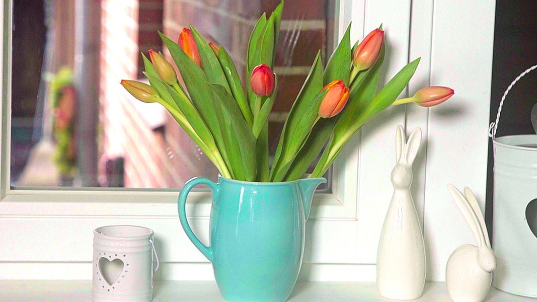 so bleiben tulpen in der vase frisch ratgeber. Black Bedroom Furniture Sets. Home Design Ideas