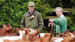 Prinz Charles und sein Sohn William inmitten einer Kuhherde auf Charles' Farm in Gloucester. © Picture-Alliance / dpa