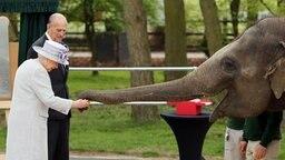 Queen Elizabeth und Prinz Philip besuchen den Zoo in Whipsnade. © dpa Bildfunk Fotograf: Chris Radburn