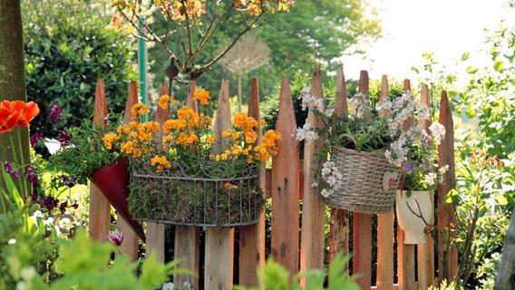 Einen Zaun aus Einweg-Paletten bauen | NDR.de - Ratgeber - Garten