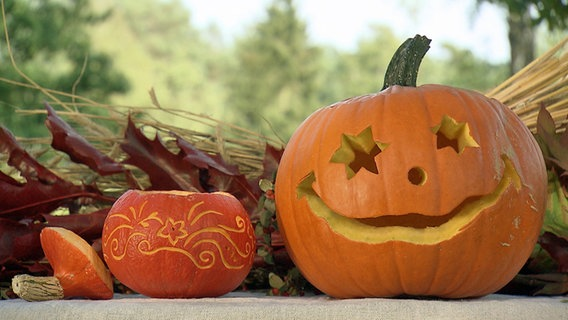 Halloween Kürbis Schnitzen Ndrde Ratgeber
