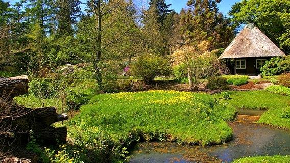 Botanischer Garten Der Universitat Rostock Ndr De Ratgeber Reise Mecklenburgische Ostseekuste