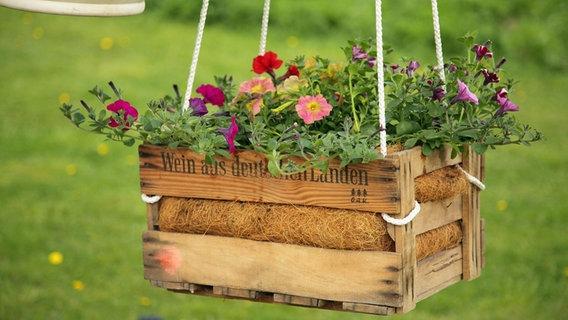 wasser sparen im garten tipps sommer, den garten im sommer richtig gießen | ndr.de - ratgeber - garten, Design ideen