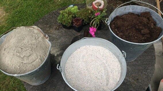Blumentöpfe Aus Zement Selber Herstellen Ndrde Ratgeber Garten
