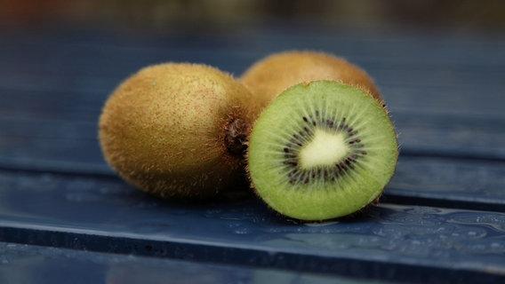 Reifen Kiwis Nach : kiwipflanzen dekorativ und geschmackvoll ~ A.2002-acura-tl-radio.info Haus und Dekorationen