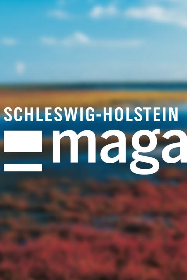 Schleswig holstein magazin fernsehen sendungen a z schleswig holstein magazin for Ndr mediathek filme
