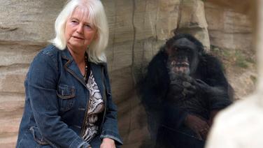 Christine Rostock bezoekt Maxi in september 2018. Op 54-jarige leeftijd is Maxi het oudste dier in de dierentuin van Hannover. © NDR, kosteloos