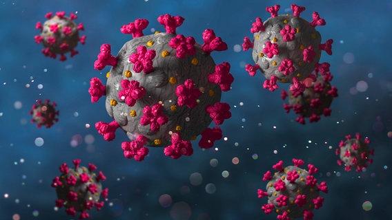 Diagrama do Coronavirus © Colourbox Foto: Anterovium