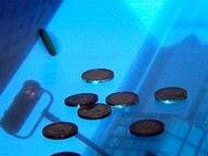 Euromünzen liegen auf dem Spiegelbild eines Bankturms. © NDR