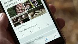 Tweet mit Bildern aus einem Schweinestall © NDR Foto: Screenshot