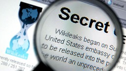Die Website von Wikileaks © picture-alliance/dpa Fotograf: Oliver Berg