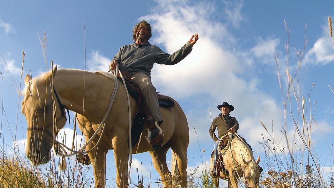 Der Pferdeversteher - Wie Pferde woanders sprechen