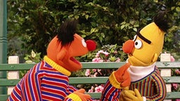 Ernie & Bert aus der Sesamstrasse (Folge 2791).