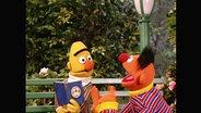 Ernie und Bert aus der Sesamstrasse (Folge 2795).