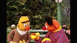 Ernie und Bert aus der Sesamstrasse (Folge 2800).
