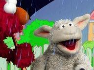 Wolle unter einem Regenschirm mit Elmo.