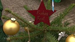 Ein dekorierter Weihnachtsbaum.