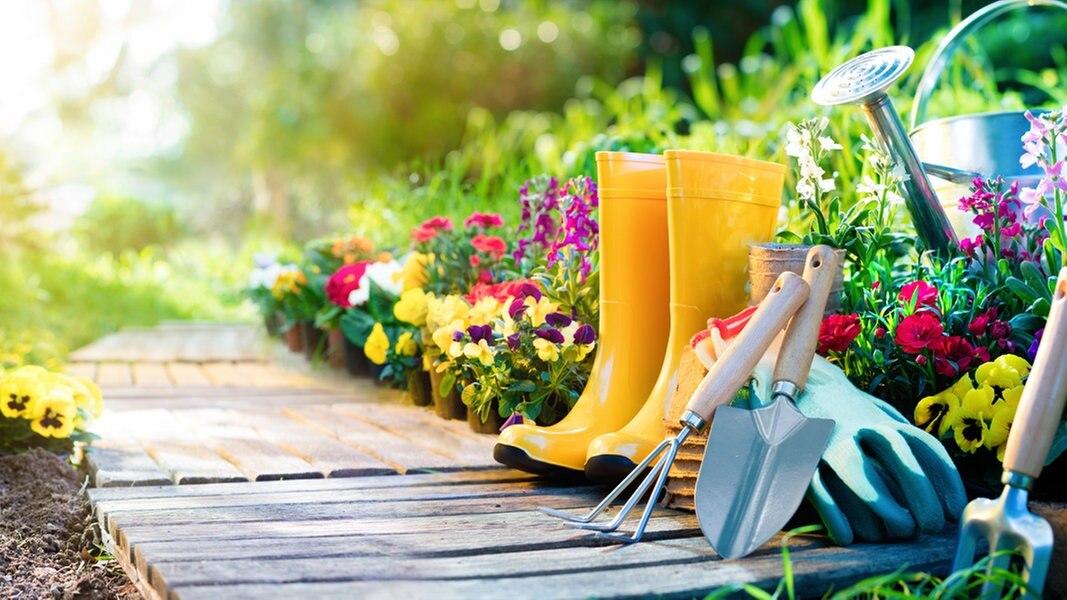 Zur Sache: Den Garten im Frühling auf Vordermann bringen