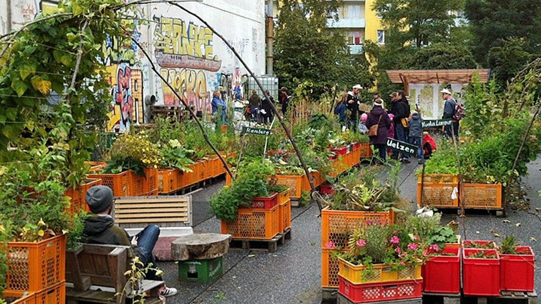 Urban Gardening Hamburg : urban gardening beim gartendeck hamburg st pauli ratgeber garten ~ Frokenaadalensverden.com Haus und Dekorationen
