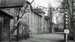 """Das Lagertor des ehemaligen KZ Auschwitz mit dem Schriftzug """"Arbeit macht frei"""". © dpa - Bildarchiv Foto: Brix"""