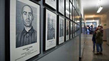 Bilder von Häftlingen zu sehen in einer Baracke der Gedenkstätte Auschwitz © NDR Foto: Christian Spielmann