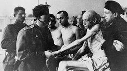 Ein sowjetischer Militärarzt untersucht kurz nach der Auschwitz-Befreiung einen bis auf die Knochen abgemagerten Häftling aus Wien. © dpa - Bildarchiv