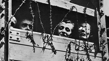 Aus einem mit Stacheldraht gesicherten Viehwaggon blicken drei Menschen - undatiertes Bild von der Ankunft neuer Opfer in Auschwitz. | picture-alliance