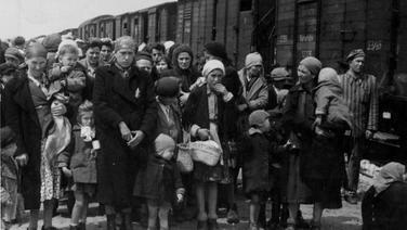 Jüdische Deportierte aus Ungarn stehen vor Bahnwaggons, mit denen sie gerade im Todeslager Auschwitz-Birkenau angekommen sind. © picture alliance / AP Photo
