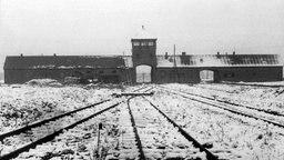 Blick auf schneebedeckte Gleise, die zu den Gaskammern des ehemaligen Konzentrationslagers Auschwitz-Birkenau führen. © picture-alliance / dpa Foto: Guenter Schindler