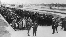Neu angekommene Häftlinge auf der Todesrampe im KZ Auschwitz, links Frauen und Kinder, rechts die Männer. Vor ihnen stehen SS-Leute. © picture-alliance / dpa