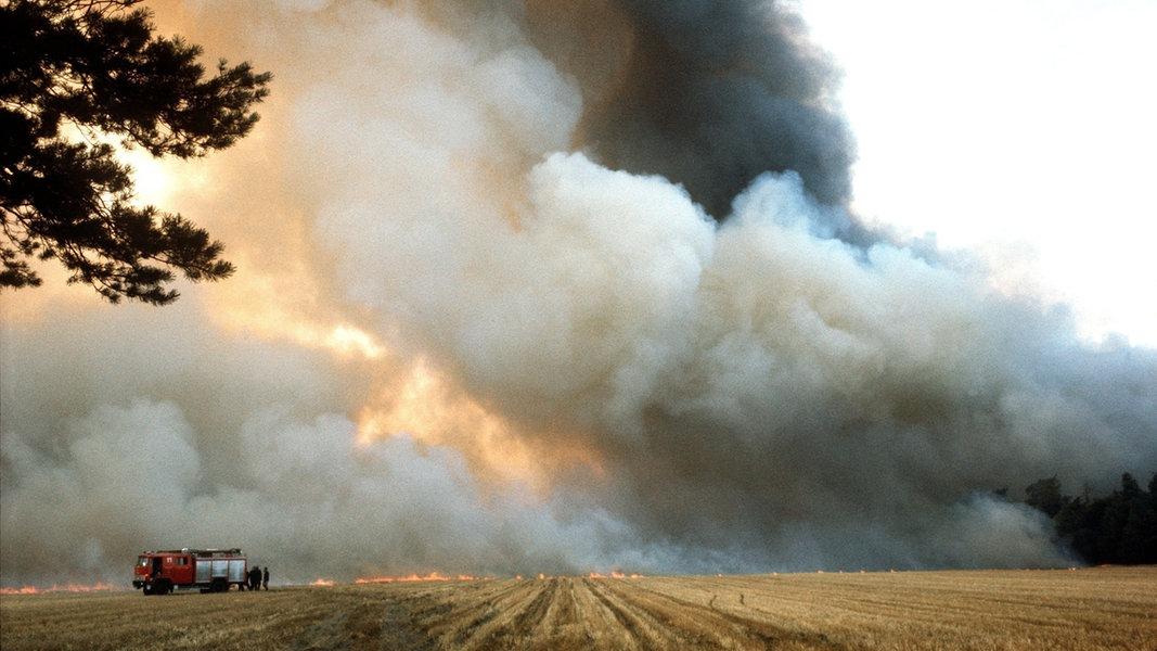 Heidebrand 1975: Von Flammen überrollt