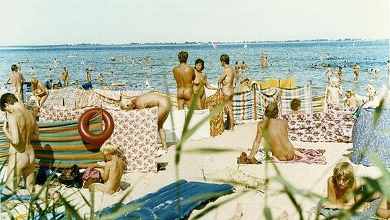 Strand geschichte fkk Geschichte: Mein