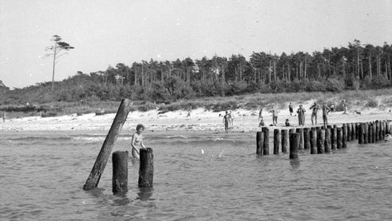 Sommer, Sonne, nackt am Strand (Bild 9)| NDR.de
