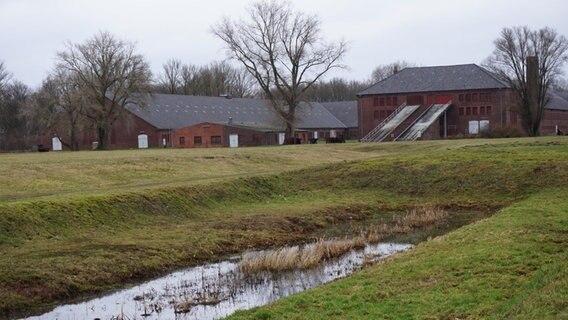 Kz Neuengamme Häftlinge
