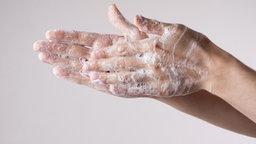 Zwei Hände mit Seife. © fotolia.com Foto: staras