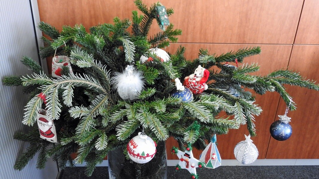 Ndr Weihnachtsbaum.Mein Weihnachtsbaum Die Schönsten Einsendungen Ndr De Hand In