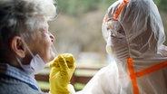 Bei einer älteren Dame wird ein Abstrich in der Nase gemacht. © Colourbox