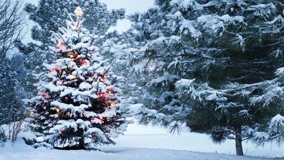 wie lange dauert weihnachten kirche im ndr. Black Bedroom Furniture Sets. Home Design Ideas