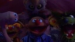 Ernie, Bert, Finchen und mehrere Tiere gucken irgendwo hin. © NDR/Sesame Workshop Foto: NDR