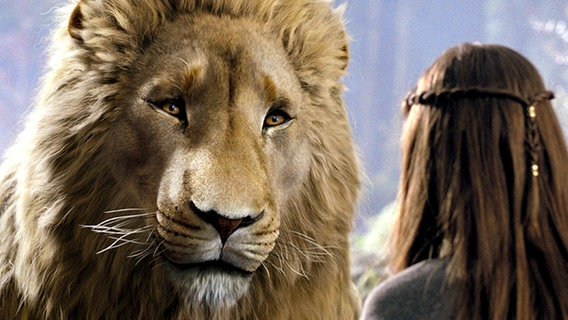 Szene aus Die Chroniken von Narnia - Prinz Kaspian von Narnia © Disney Enterprises, Inc. and Walden Media LLC.