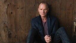 Sting sitzt an einer Holzwand © Universal Music