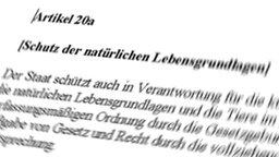 Artikel 20a des Grundgesetzes (Grafik-Montage)
