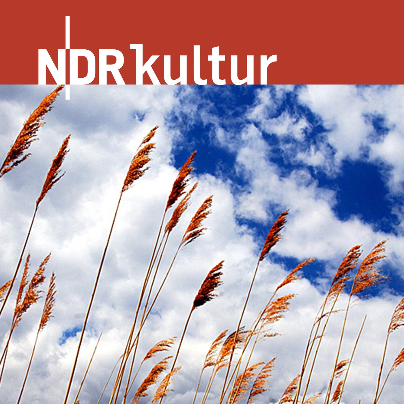 NDR Kultur - Glaubenssachen