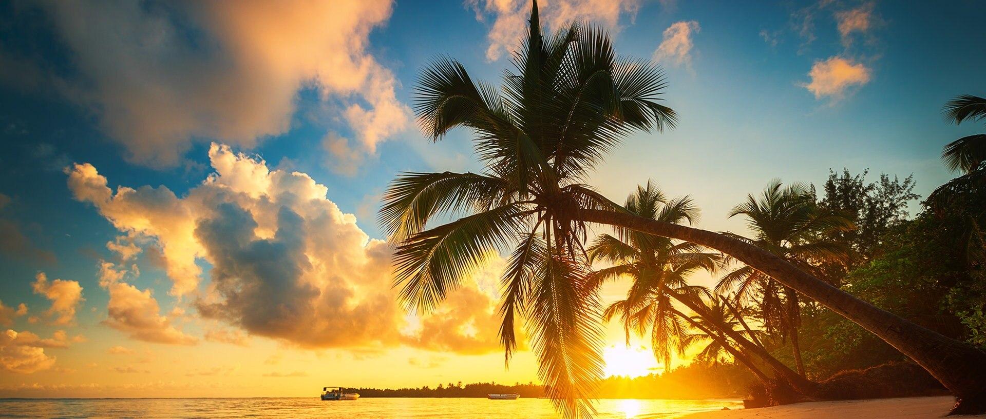Sonnenuntergang am Palmenstrand., © fotoliaFotograf: ValentinValkov